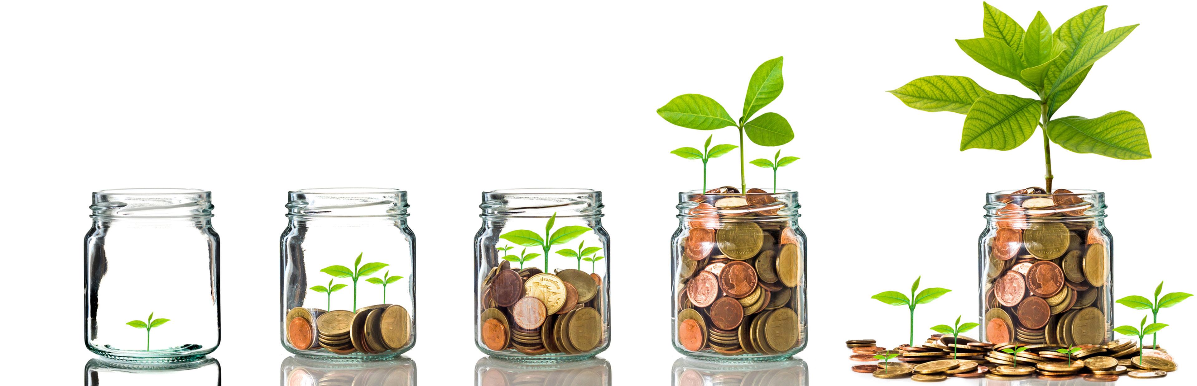 Fixed Deposit | National Savings Bank